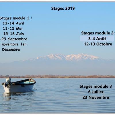 Programme stages 2019 inpixio