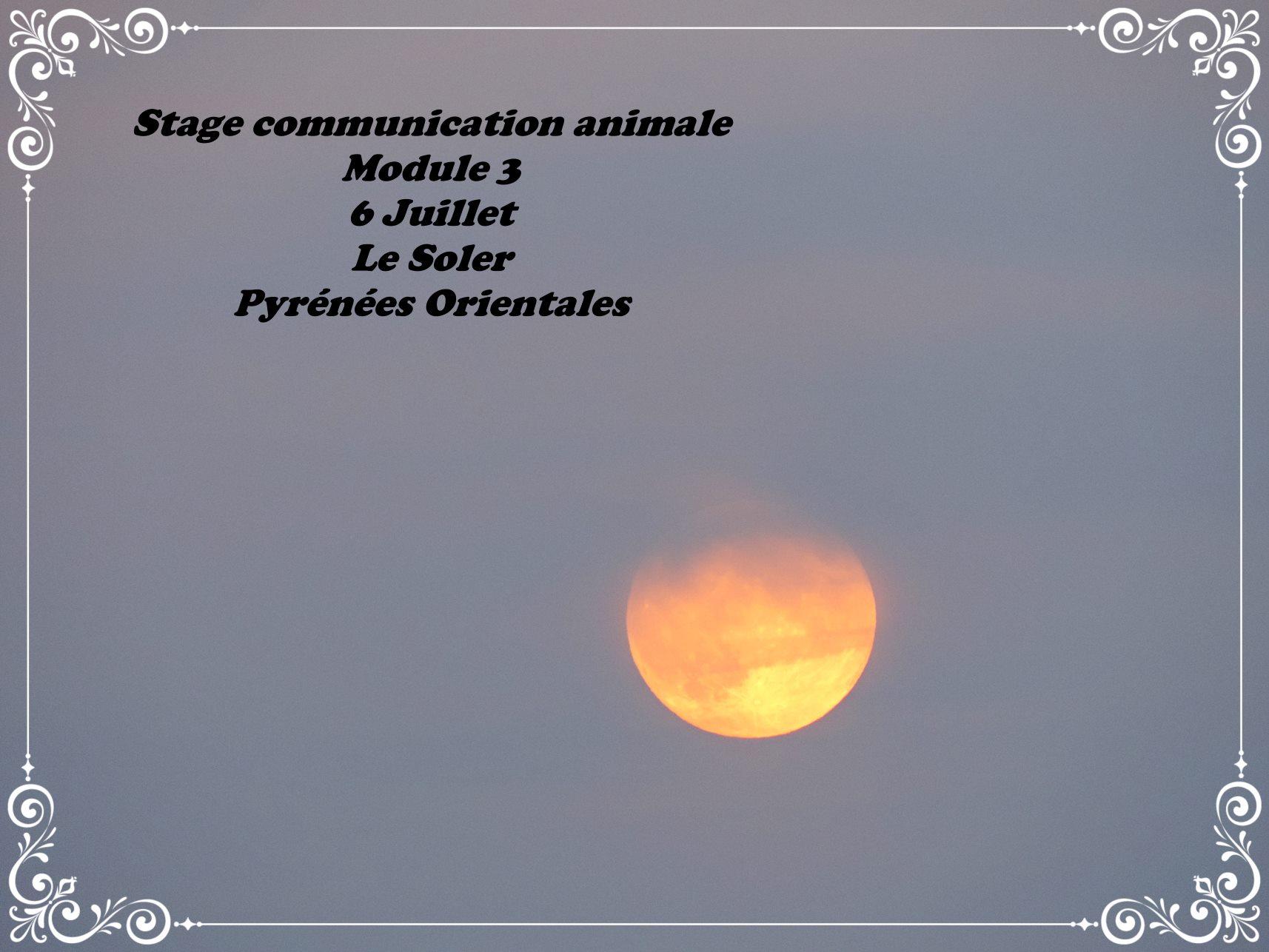 Stage module 3 juillet